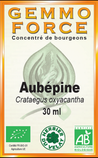 aubépine-macérât-de-bourgeon-france-phytominero