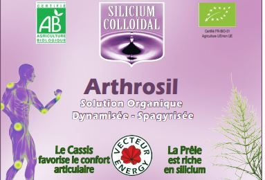Silicium Bio/France/Vecteur Energy/Phytominero